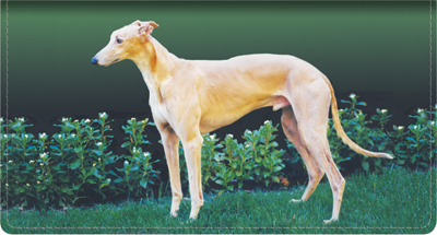 Top Breeds - Greyhound Leather Cover